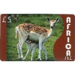 Africa Tel £5 International Calling Card
