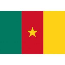 Cameroon Mobile Topup