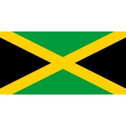 Jamaica Mobile Topup