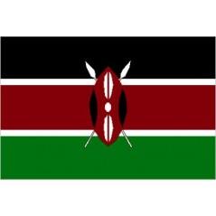 Kenya Mobile Topup