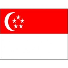 Singapore Mobile Topup