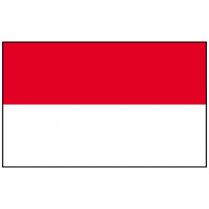 Indonesia Mobile Topup