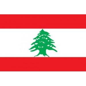 Lebanon Mobile Topup